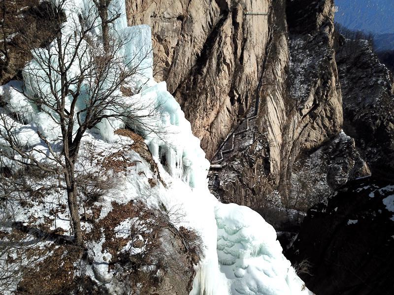 河南白云山:山涧野瀑布凝固绽琼花 垂冰悬挂百丈崖